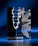 Rectangle Crevice Acrylic Award Employee Awards