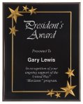 Black Star Acrylic Award Recognition Plaque Sales Awards